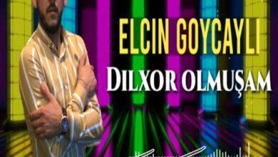 Elcin Goycayli Dilxor Olmusam 390x220 - دانلود آهنگ ترکی دیلخور اولموشام از الچین گویجیلی