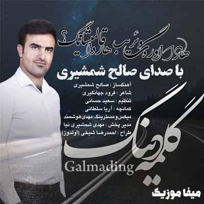5586565 - دانلود آهنگ ترکی صالح شمشیری گلمه دینگ