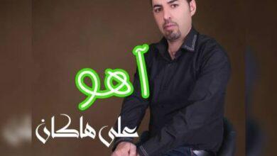 Ali Hakan Ahou 390x220 - دانلود آهنگ جدید علی هاکان به نام آهو