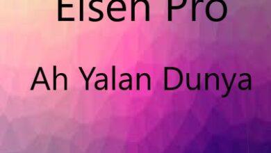 Elsen Pro Ah Yalan Dunya smelody.ir  390x220 - آهنگ جدید الشن پرو به نام آه یالان دنیا