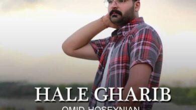 Omid Hoseynian Hale Gharib 390x220 - دانلود آهنگ جدید امید حسینیان به نام حال غریب