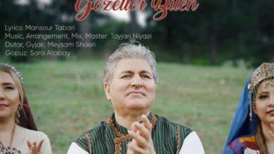 Toyjan Niyazi Gozeller Bilen 390x220 - دانلود آهنگ جدید طوی جان نیازی به نام گوزل لر بیلن