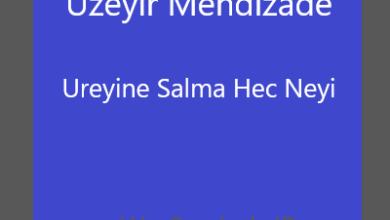 Uzeyir Mehdizade Ureyine Salma Hec Neyi smelody.ir .jpg 390x220 - آهنگ جدید اوزیر مهدی زاده به نام اوریینه سالما هچ نیی