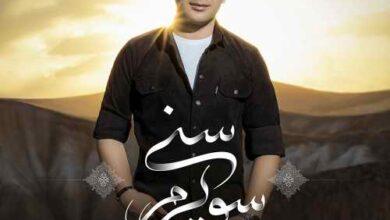 Vahid Farzi Seviram Sani 390x220 - دانلود آهنگ جدید وحید فرضی بنام سویرم سنی
