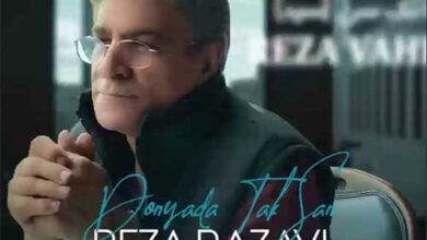 reza razavi seyyed 390x220 - دانلود آهنگ جدید رضا رضوی با نام سید دونیادا تک سن / همراه با متن آهنگ و پخش آنلاین