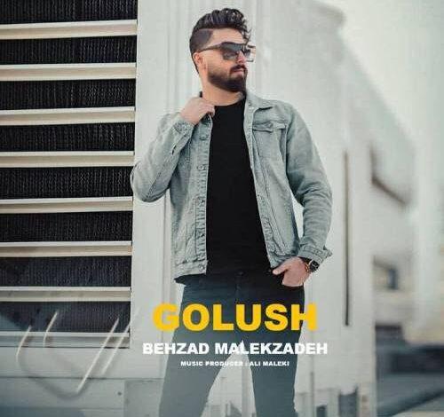 Behzad Malekzadeh Golush 500x500 500x470 - دانلود آهنگ ترکی بهزاد ملک زاده به نام گولوش