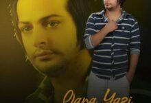 Mohsen Yahyavi Qara Yazi 220x150 - دانلود آهنگ جدید محسن یحیوی به نام قارا یازی
