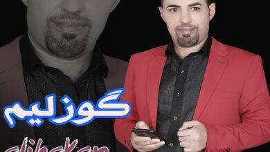 Ali Hakan Gozalim 1 390x220 - دانلود آهنگ جدید و ترکی علی حاکان به نام گوزلیم