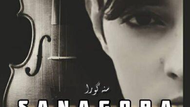 Behroz Karimzadeh Sana Gora 390x220 - دانلود آهنگ جدید بهروز کریم زاده به نام سنه گورا