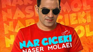 naser molaei nar cicek 390x220 - دانلود آهنگ جدید ناصر مولایی به نام نار چیچیی